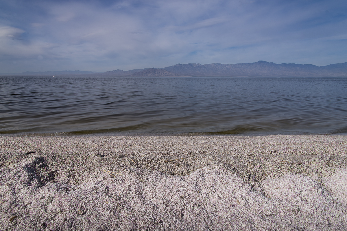 Forgotten Sea